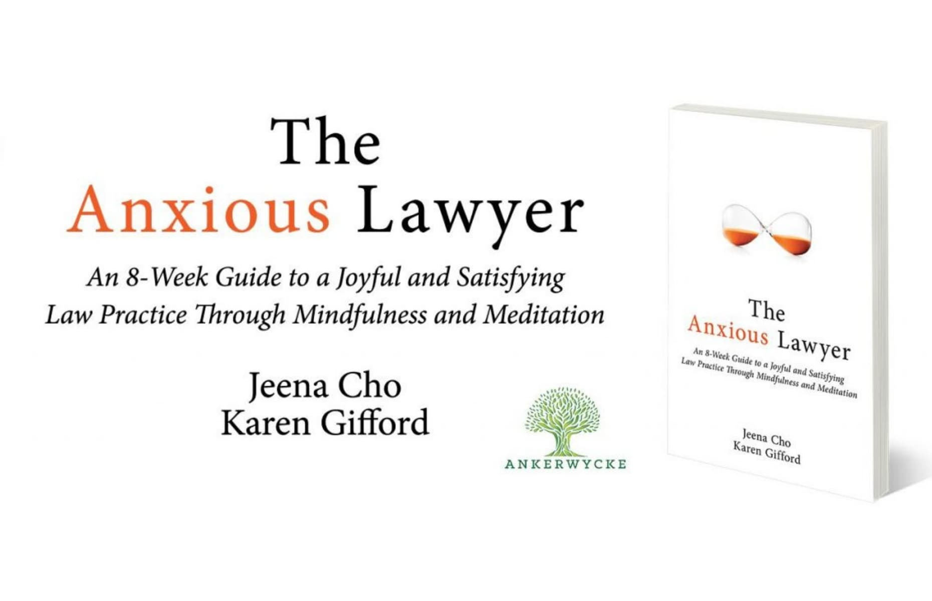 No.17-the-anxious-lawyer-min